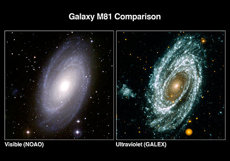 Different Galaxies Download a Galaxy in Different Lights